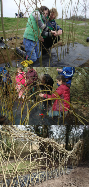 Building willow 2