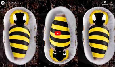 Get cumbria buzzing